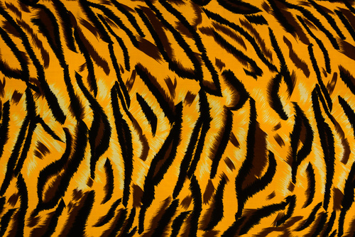 Tiger Skin Drum Wrap Design