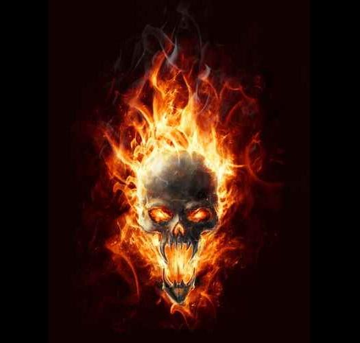 Skull 1 1