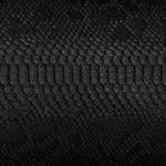 Black Snake Straight